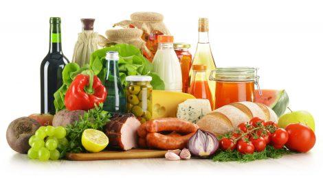 Gıda ve Ekoloji Üzerine Bilim Kurgusal Bir Seyahat